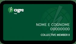 Collective Member II - CIGRE Italia